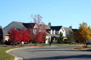 Boulder Ridge Subdivision, Ann Arbor Neighborhood