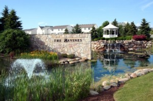 The Ravines Subdivision, Ann Arbor Real Estate Listings and Sales