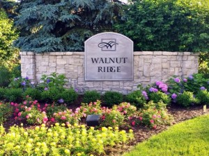 Walnut Ridge Luxury Subdivision, Ann Arbor MI Neighborhood