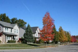 Cobblestone Ridge Subdivision, Canton MI neighborhood